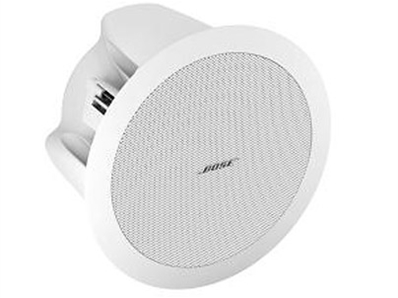 BOSE FreeSpace® DS16F吸顶扬声器